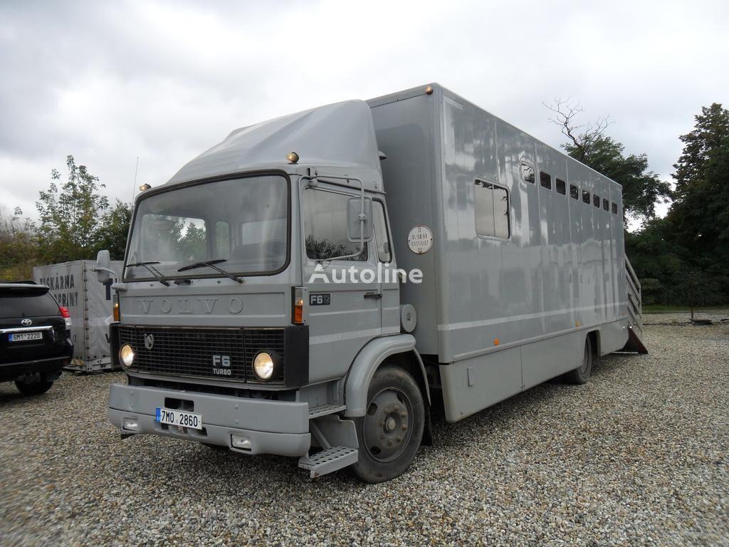 скотовоз VOLVO F612 pro přepravu koní